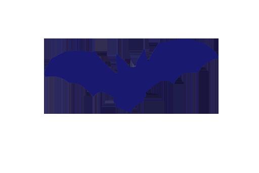Fledermausschutz-RV
